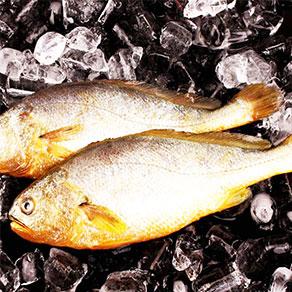 北水 有机黄鱼 500g